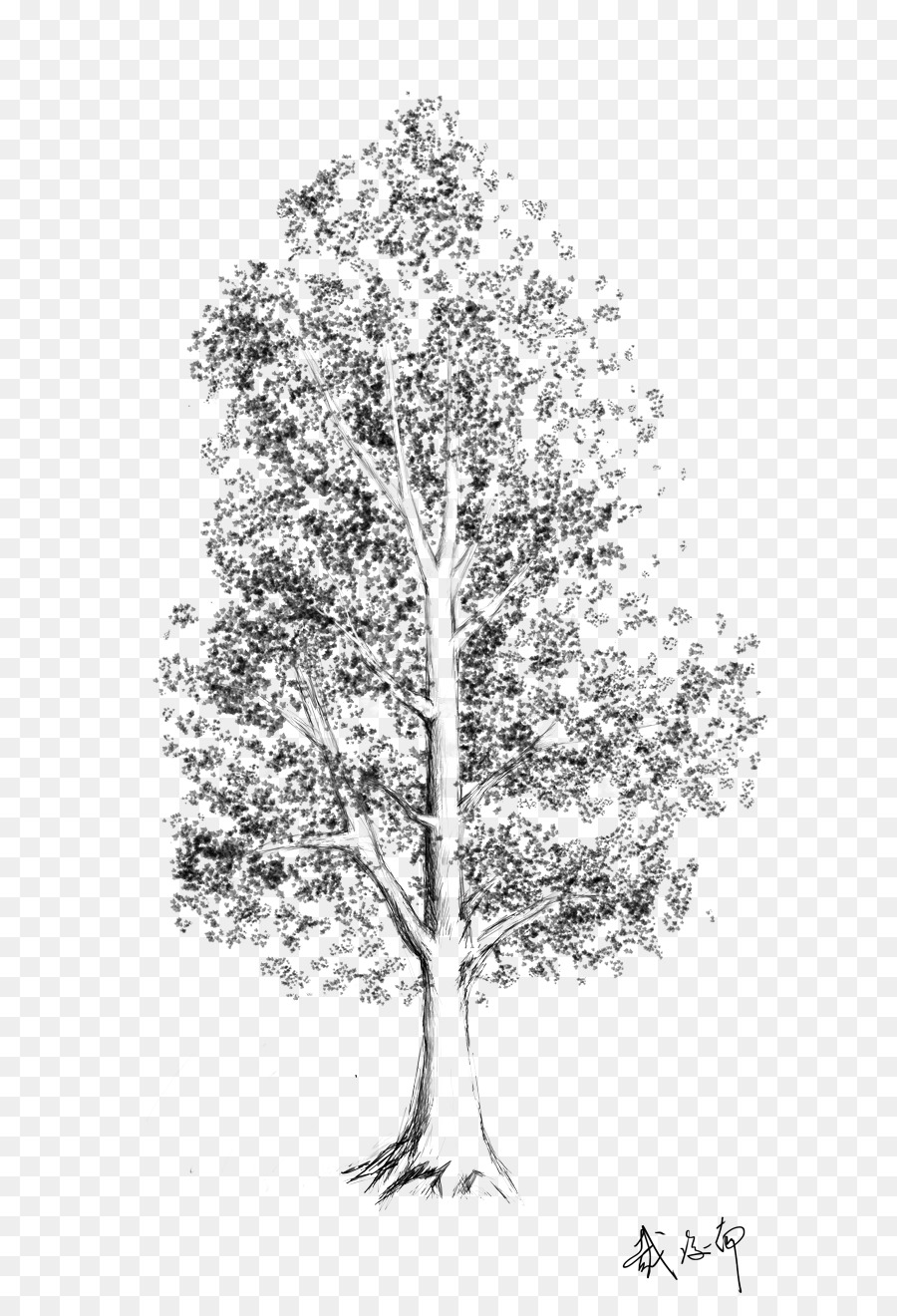 Tree Sketch Png (113+ images in Collection) Page 2.