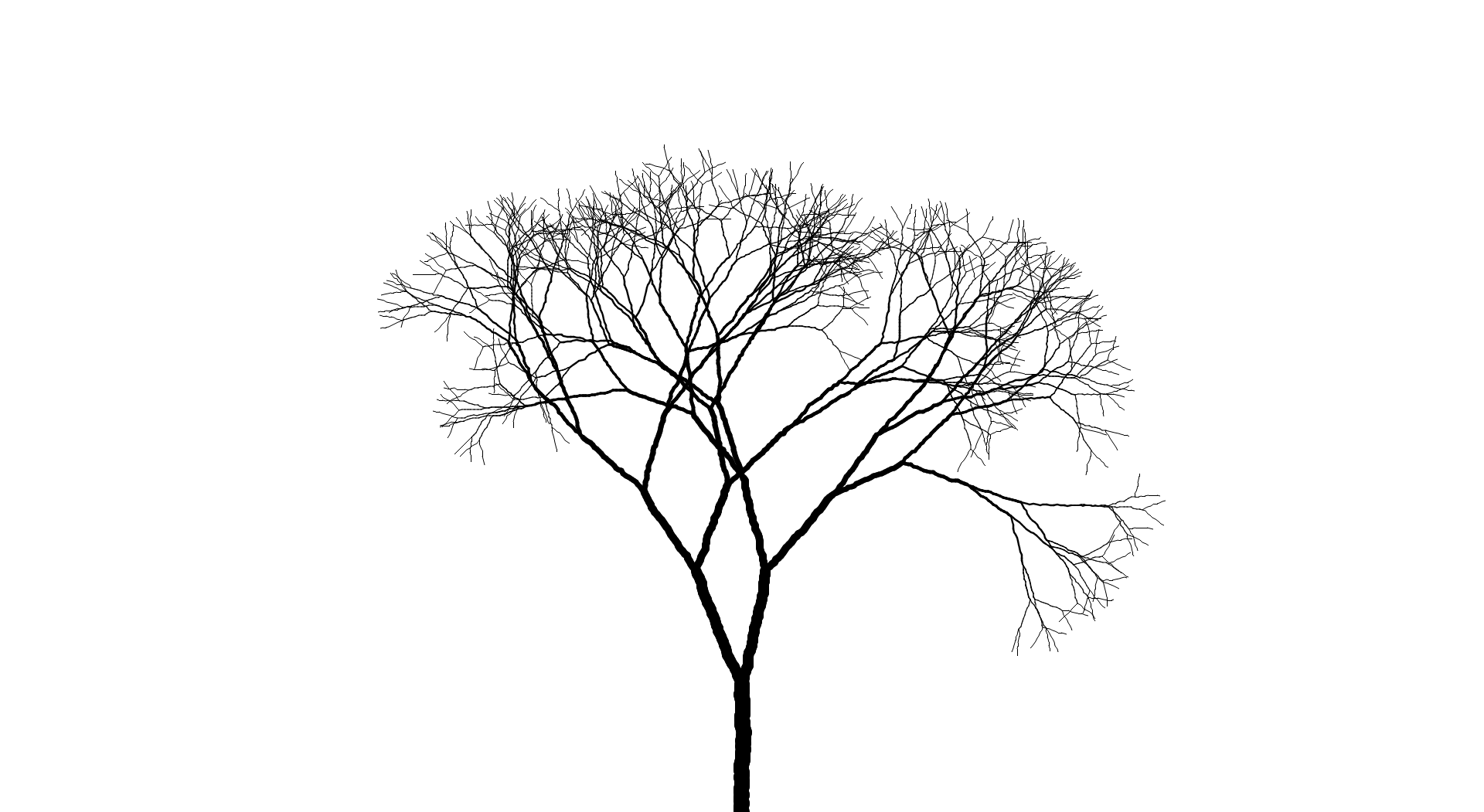 Tree Sketch Png, png collections at sccpre.cat.
