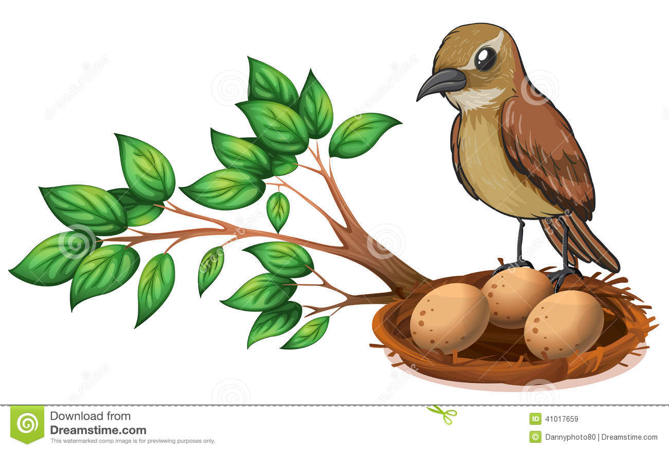 Nest in tree clipart.