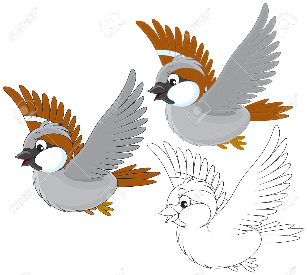 5,238 Sparrow Cliparts, Stock Vector And Royalty Free Sparrow.