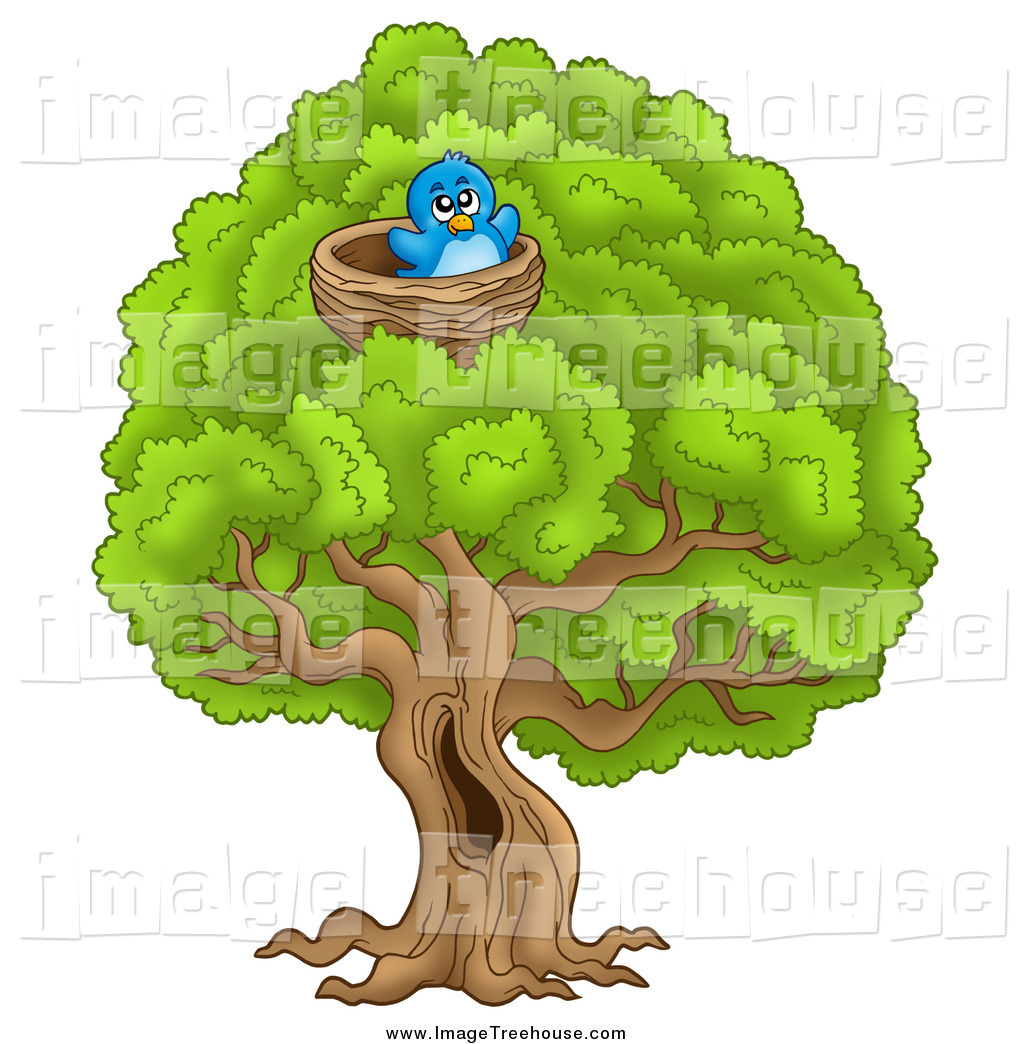 Tree and a bird nest clipart.