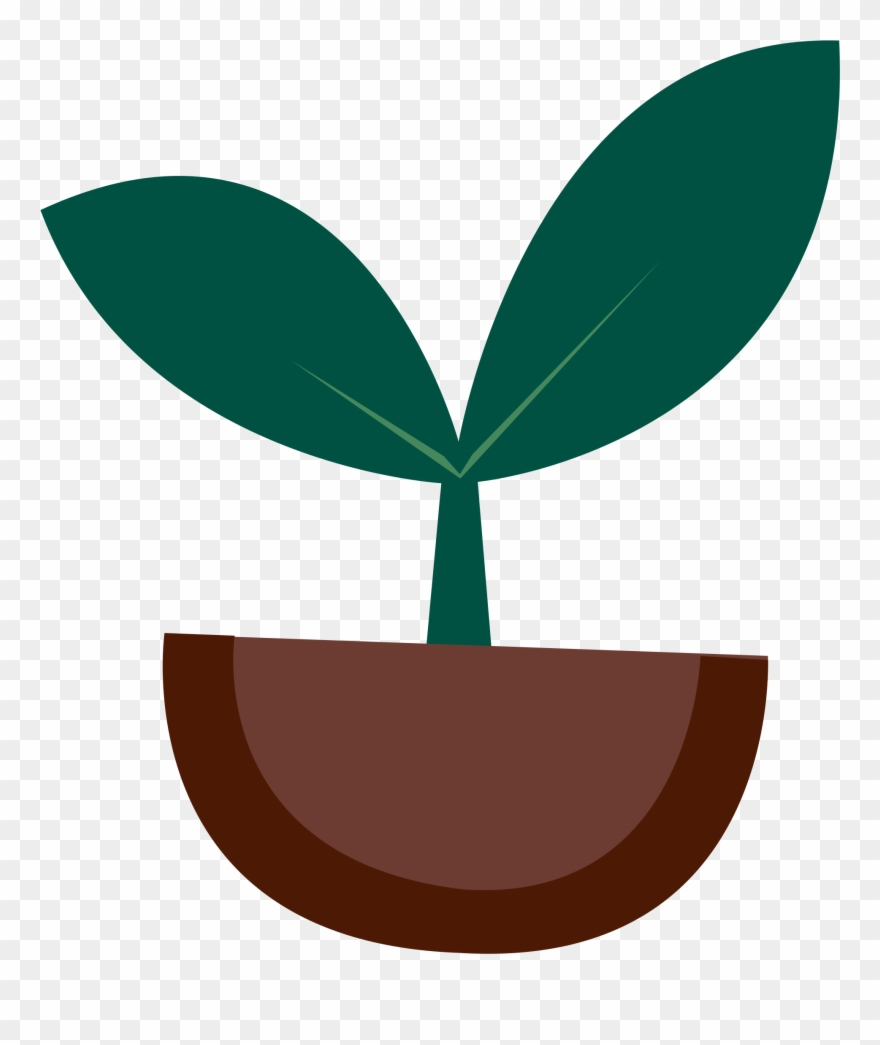 Plant Clipart Tree.