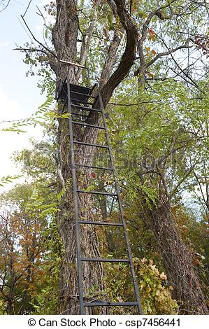 Stock Photography of hunters tree stand.