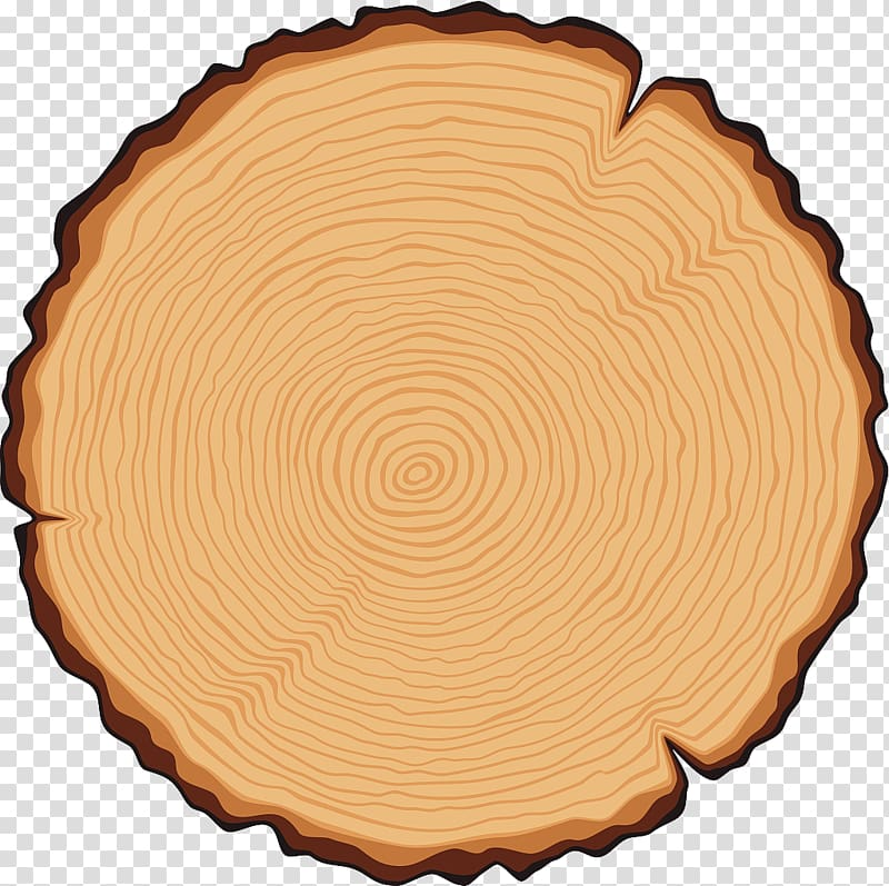 Brown stump illustration, Tree Trunk Cross section.