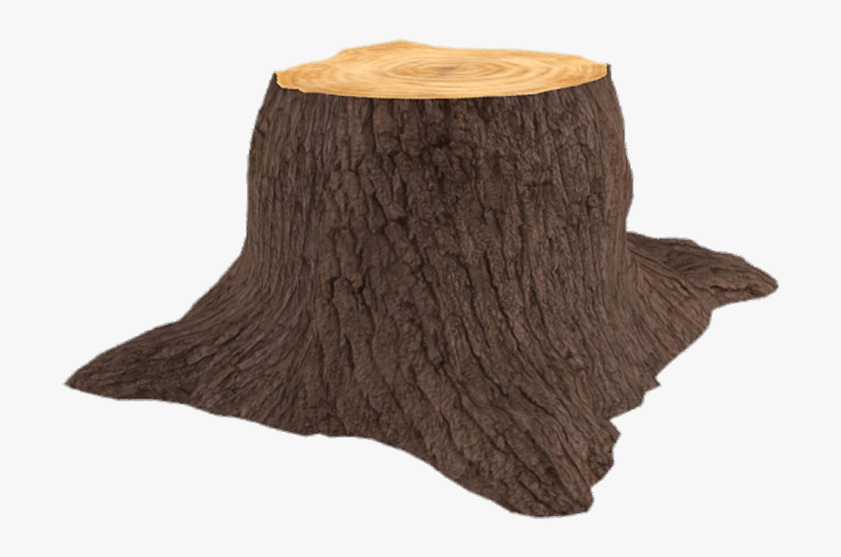 3d Tree Trunk.