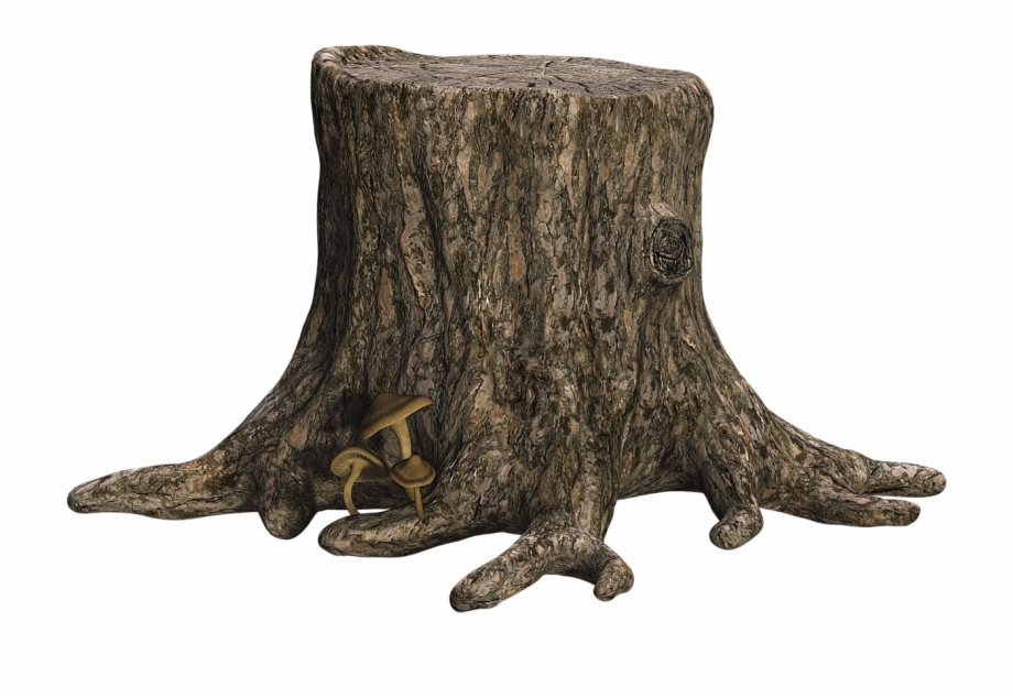 Tree Stump Png , Png Download.