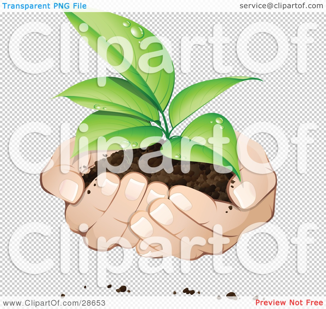 Tree support clipart #14