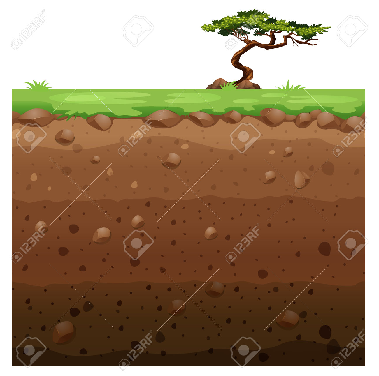 Single Tree On Surface And Underground Scene Illustration Royalty.