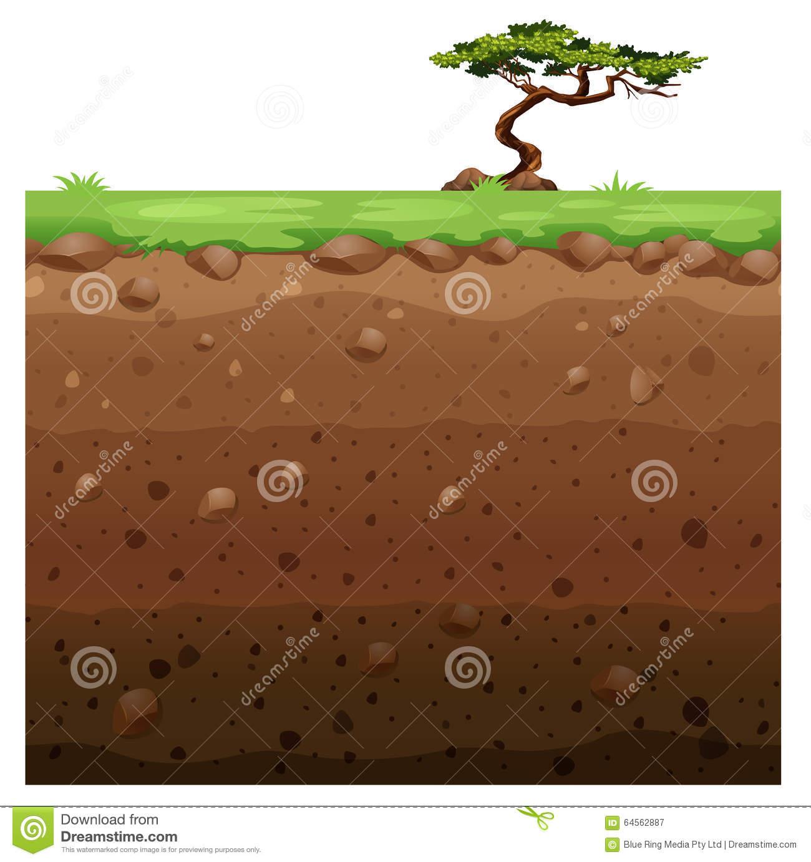 Single Tree On Surface And Underground Scene Stock Vector.