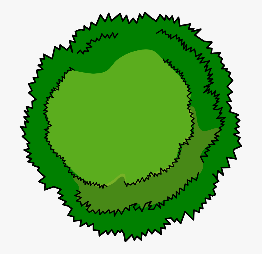 Bushes Clipart Tree Top.