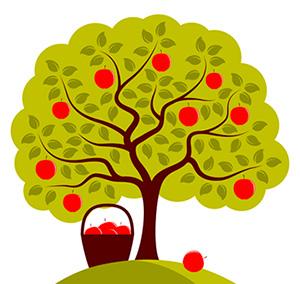 Benefits Of Pruning Fruit Trees.