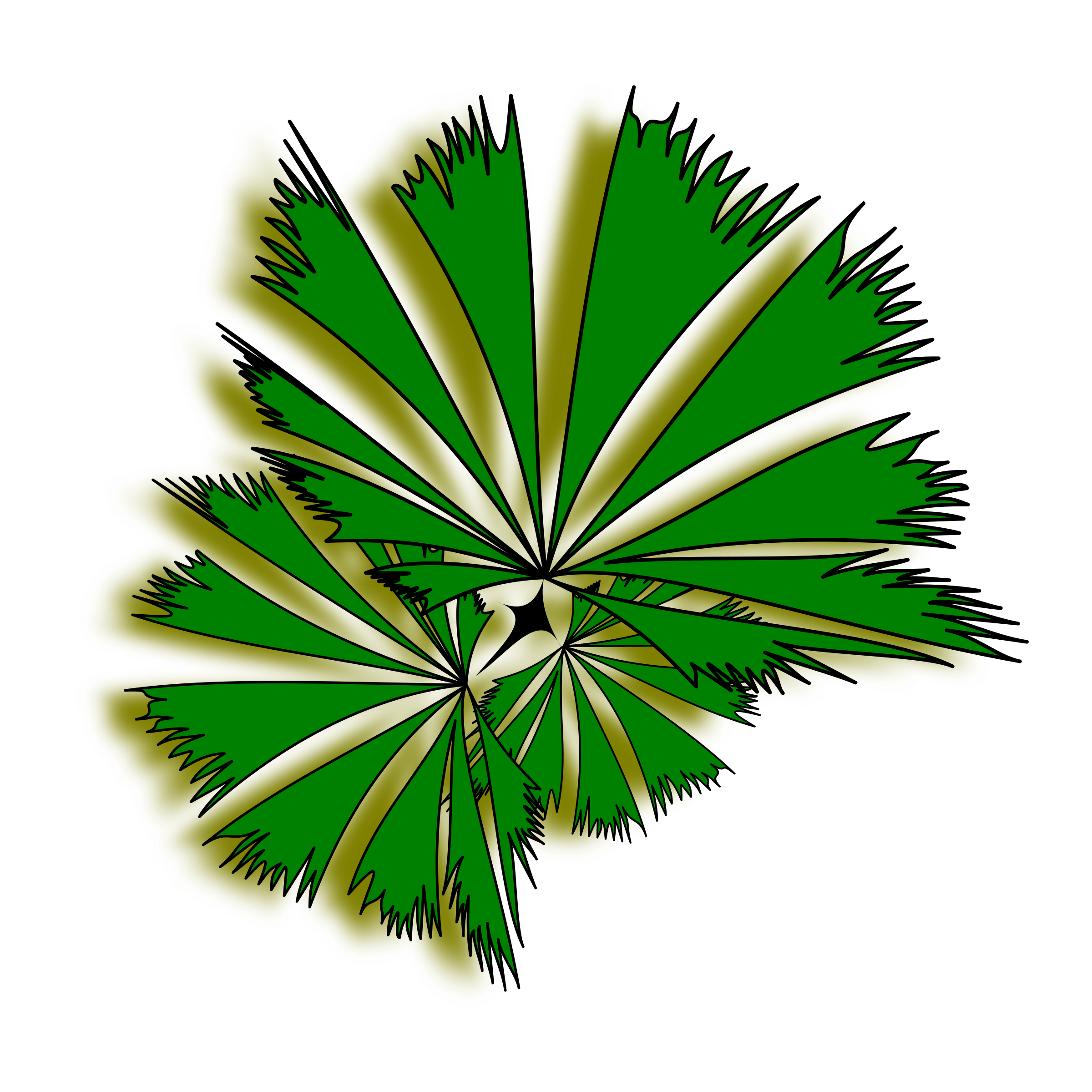 Palm tree top clipart.
