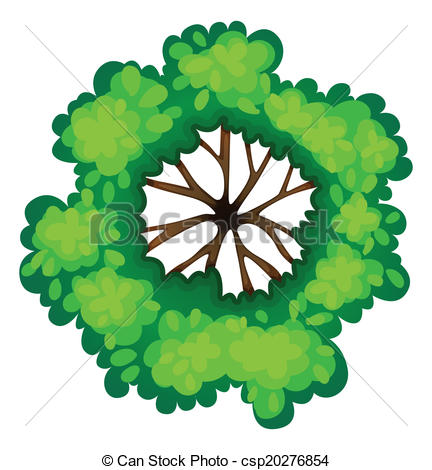 Tree clipart top view.