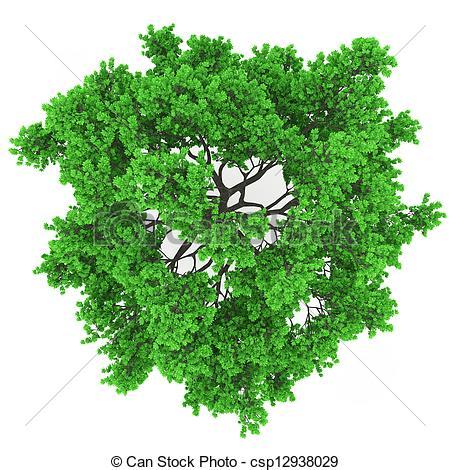 Treetops Clip Art.