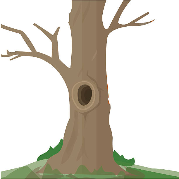 Hole in the middle of tree trunk » Clipart Station.