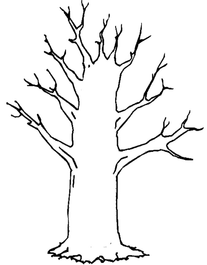 tree trunk with no leaves Colouring Pages.