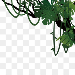 Tree Vines Png, Vector, PSD, and Clipart With Transparent.