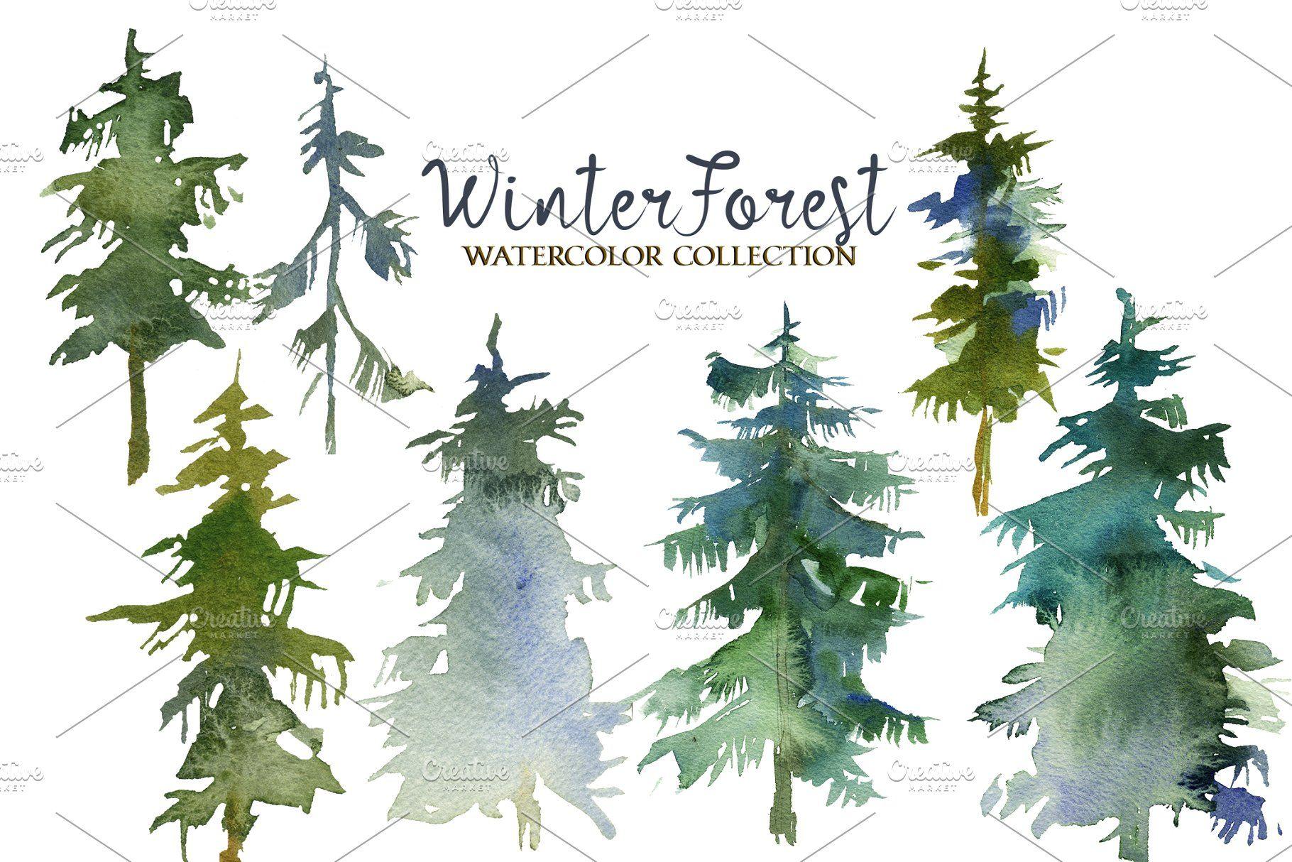 Forest Fir Trees Watercolor Clipart #Trees#Fir#Forest.