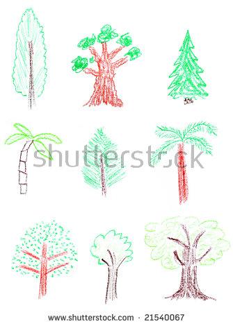 Wax Palm Tree Stock Photos, Royalty.