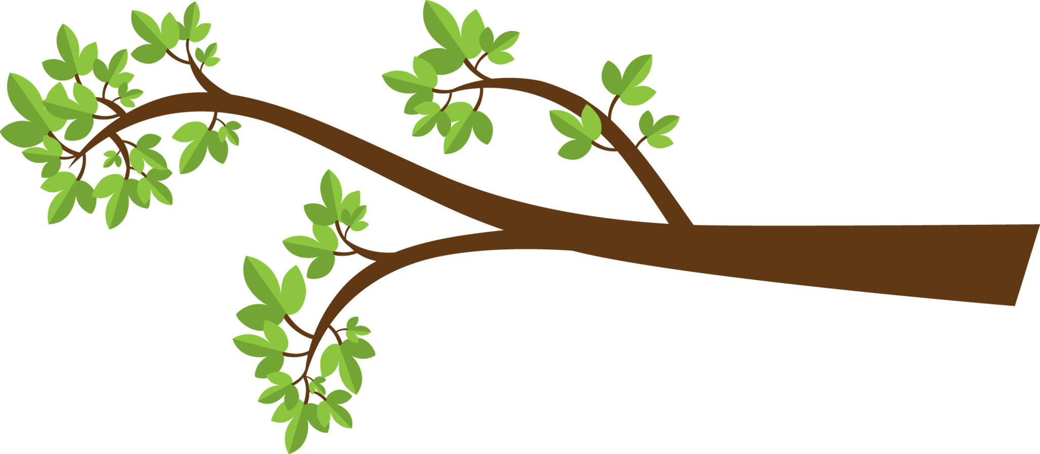 Free clipart tree branch 5 » Clipart Station.