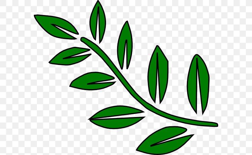 Branch Leaf Tree Clip Art, PNG, 600x506px, Branch, Bay.