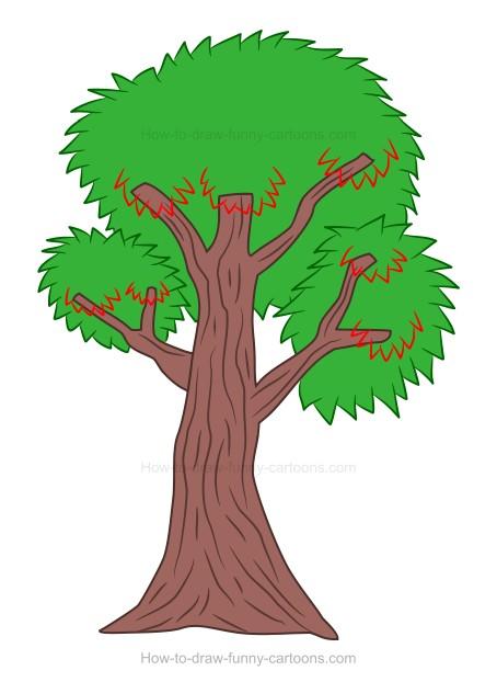 How to draw a cartoon tree.