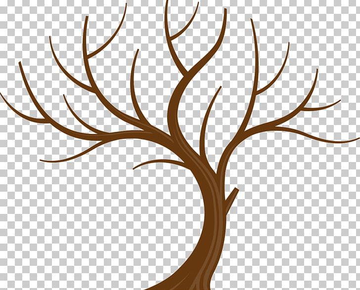Tree Branch Leaf PNG, Clipart, Branch, Clip Art, Family Tree.