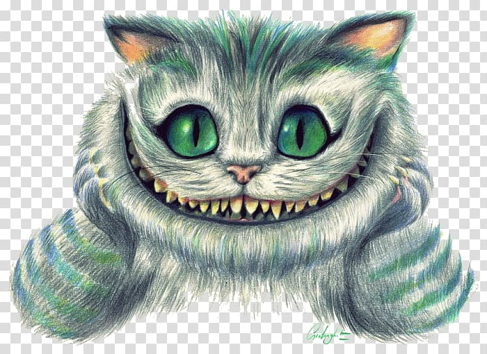 Cheshire cat of Alice in Wonderland illustration, Cheshire.