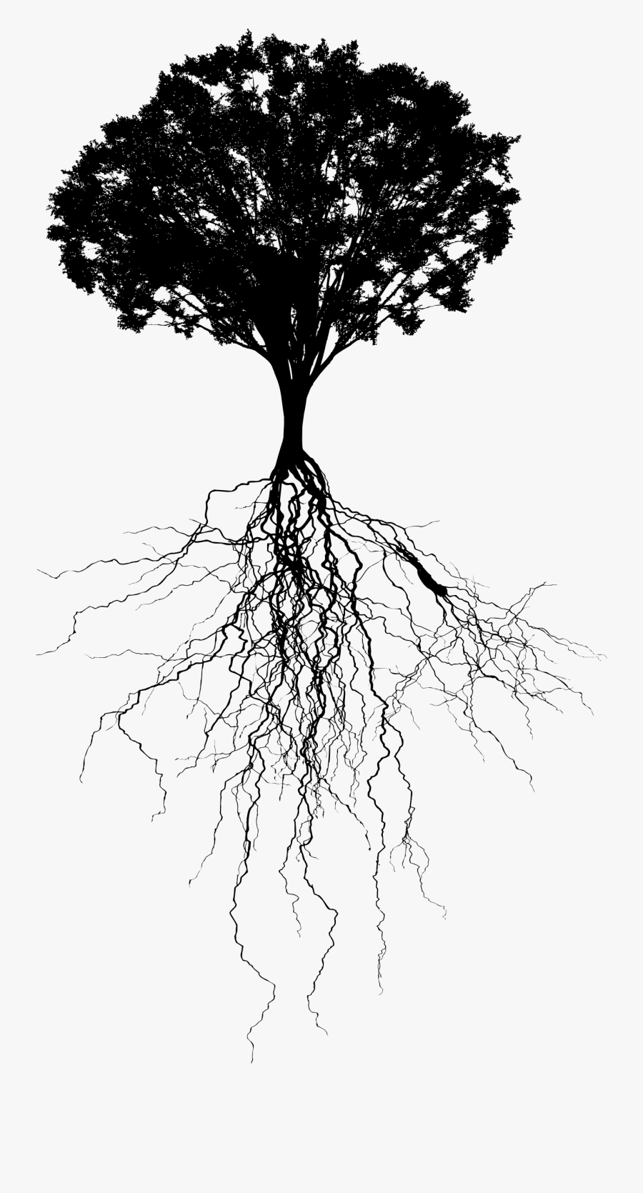 Tree With Deep Roots Silhouette.