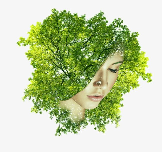 By Trees Covered Half Of His Face Female Head PNG, Clipart.