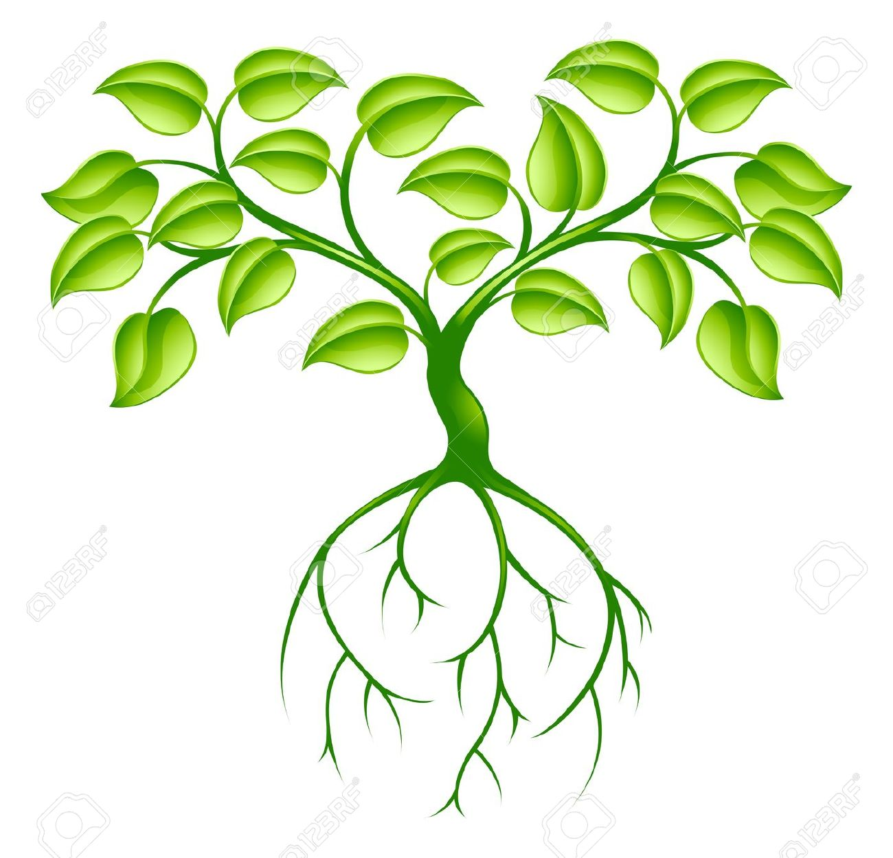 Green Tree Graphic Design Concept With Long Roots Royalty Free.