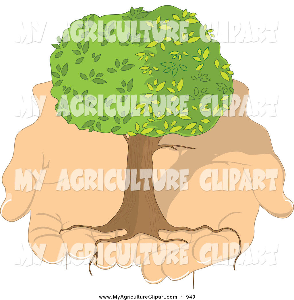 Vector Agriculture Clipart of a Healthy Tree with Long Growing.