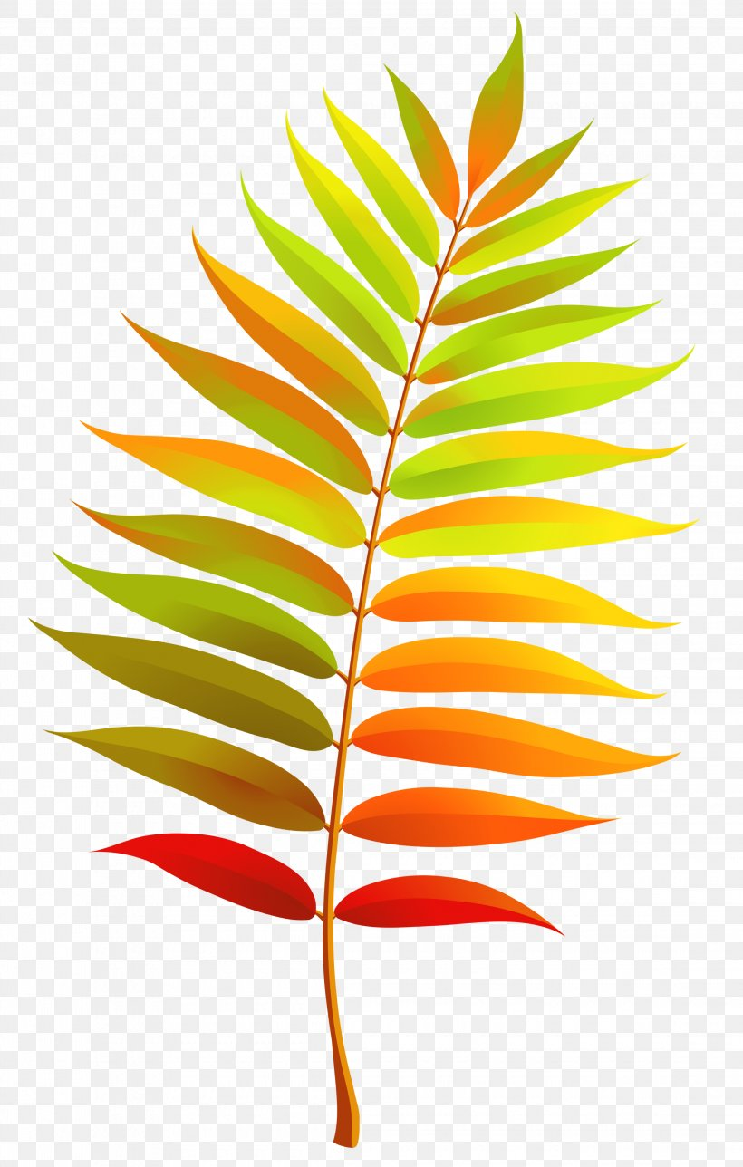 Leaf Clip Art, PNG, 2240x3520px, Leaf, Autumn, Autumn Leaf.