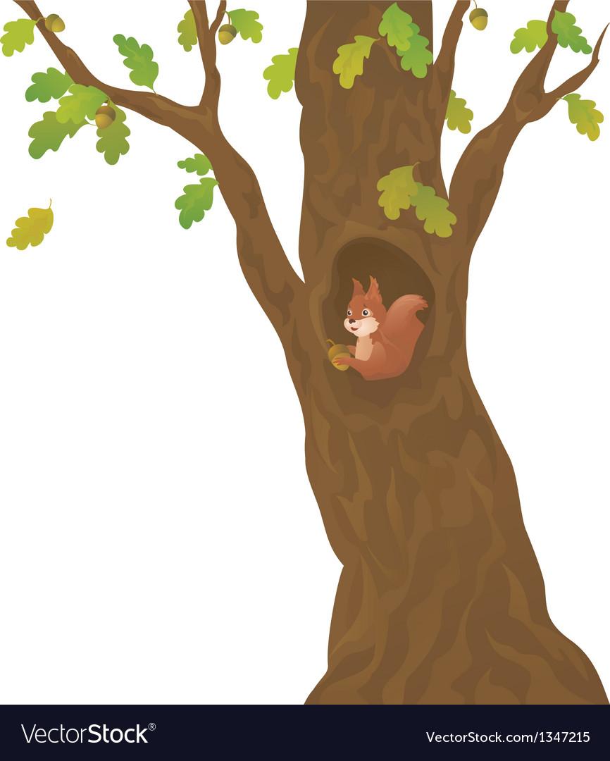 Cartoon oak and squirrel.