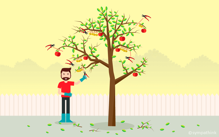 How to Prune and Plant Fruit Trees for Higher Yields.