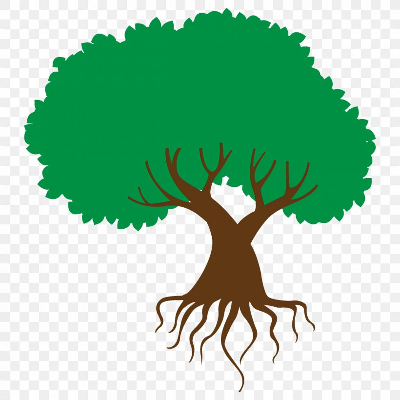 Green Tree Root Plant Clip Art, PNG, 1200x1200px, Green.