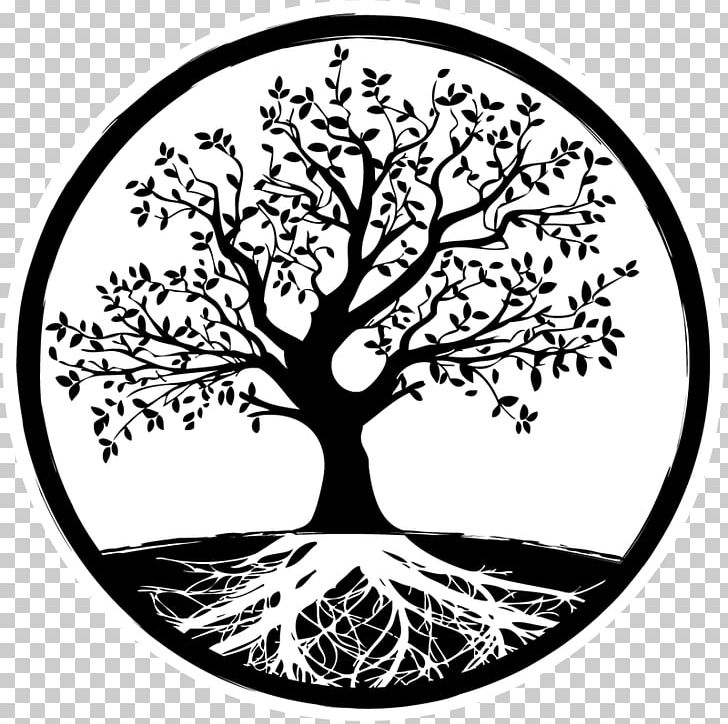 Bird Tree Root PNG, Clipart, Animals, Area, Bird, Black And.