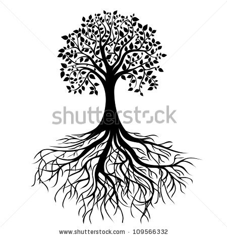 Tree Roots Stock Images, Royalty.