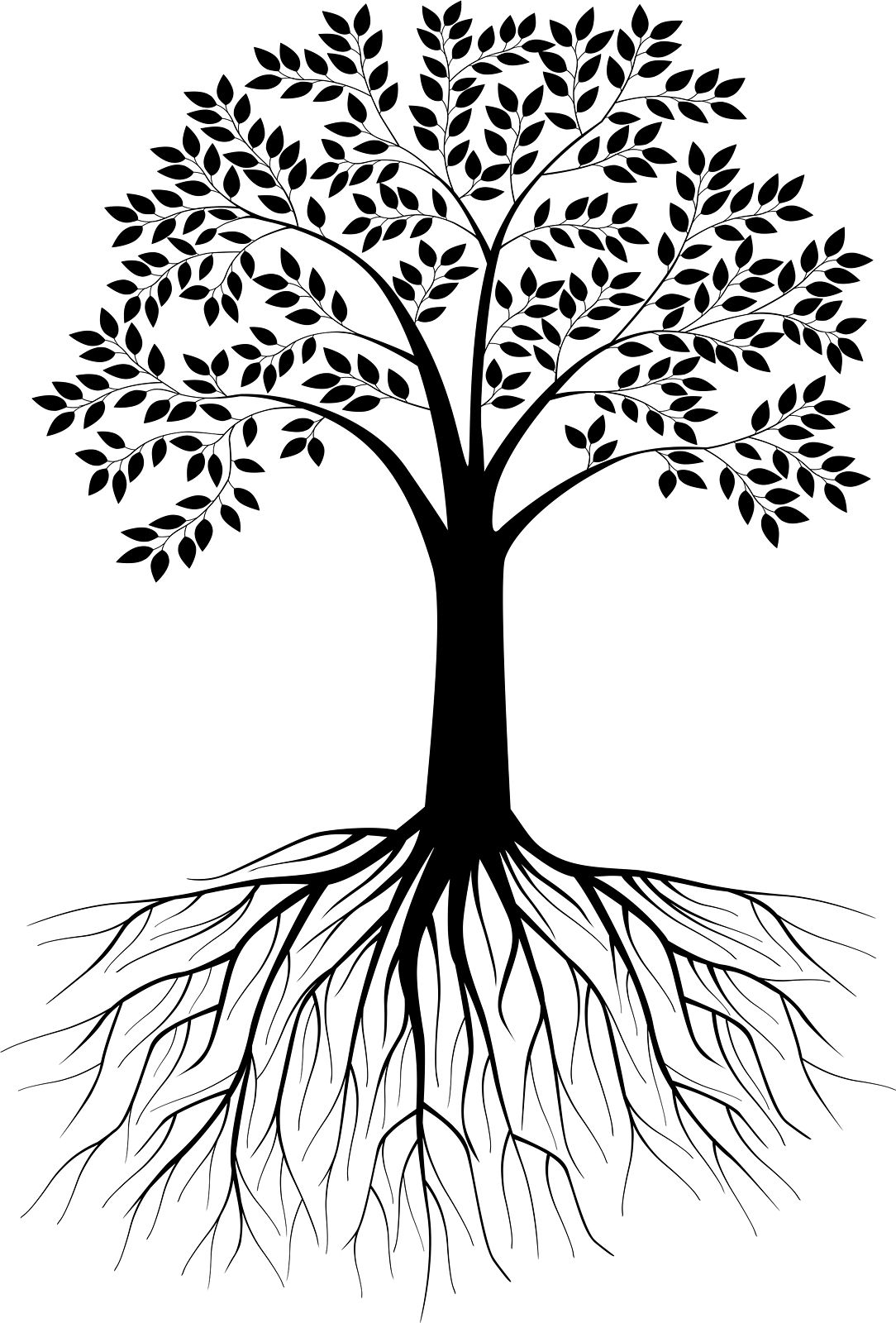Tree with roots clipart black and white 3 » Clipart Station.