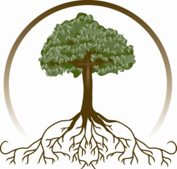 Free Tree Roots Png, Download Free Clip Art, Free Clip Art.