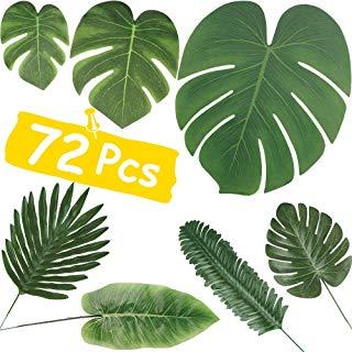 Amazon.com: seven leaf.