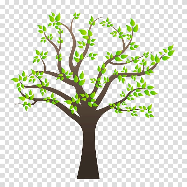 Family tree Family tree , arboles transparent background PNG.