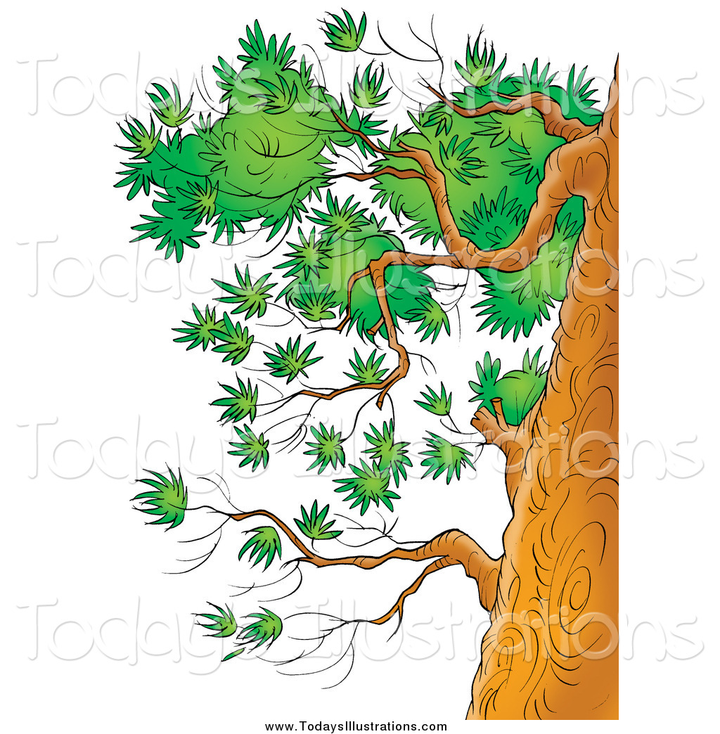 tree with trunk clipart branches #11