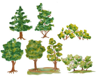 Wood clipart tree.