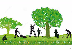 Showing post & media for Landscape workers cartoon.