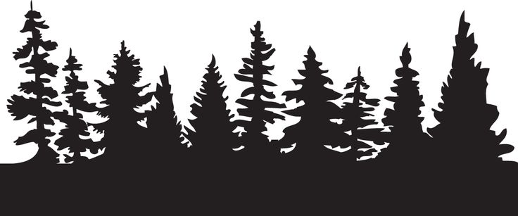 Forest Silhouette.