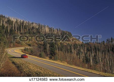 Stock Photo of NC, North Carolina, Highest elevation on the Blue.