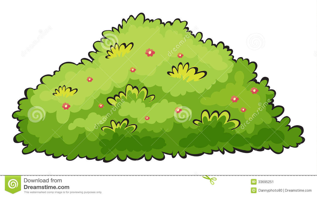 Bush tree clipart.