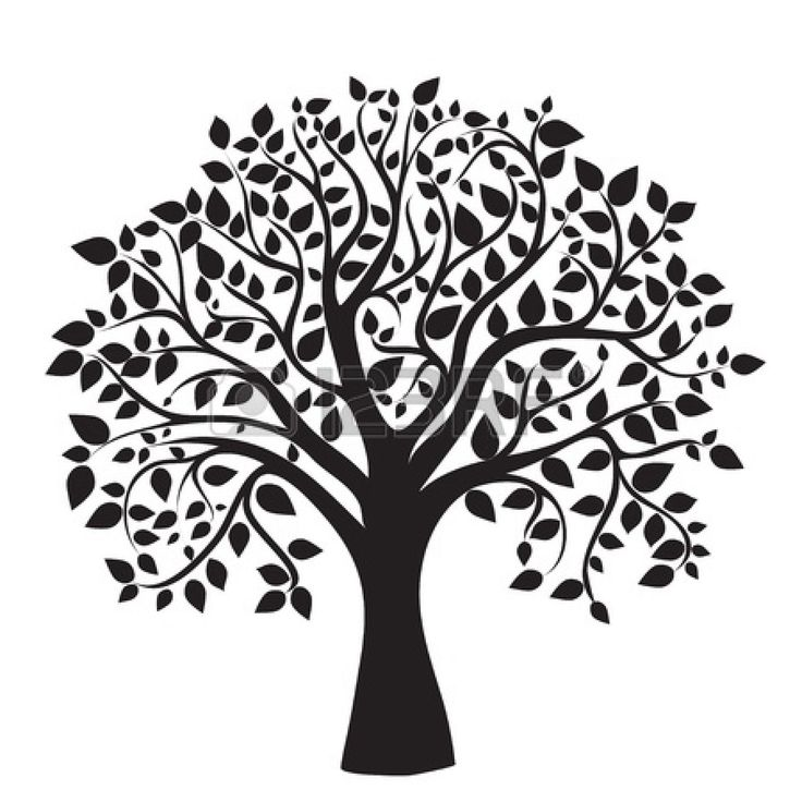 1000+ ideas about Family Tree Tattoos on Pinterest.