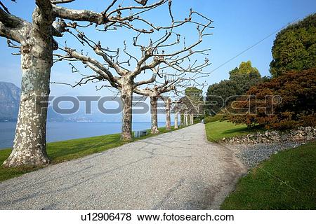 Pictures of Ornamental gardens of Villa Melzi with path along lake.